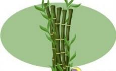 Бамбуковый наполнитель для подушек